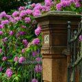 portail maisons