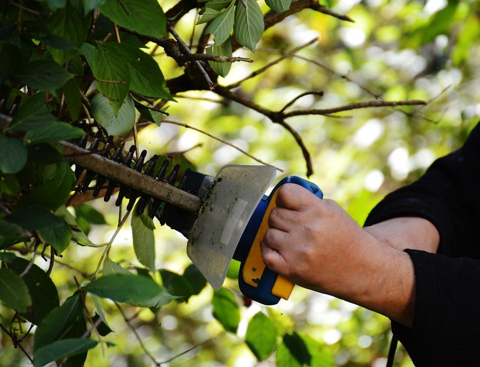 Le taille haie, un outillage conçu pour un entretien idéal de votre jardin